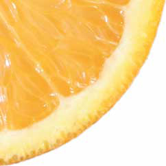 bitter orange increase metabolism